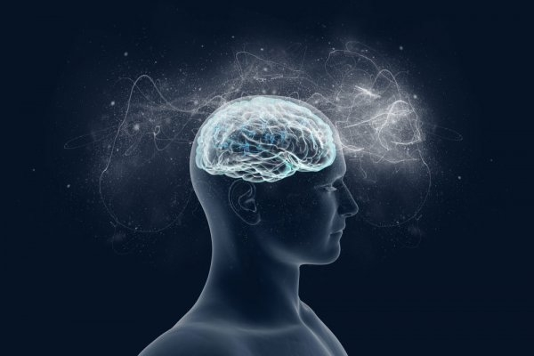 MS Hastalığında Kök Hücre Tedavi Dönemi