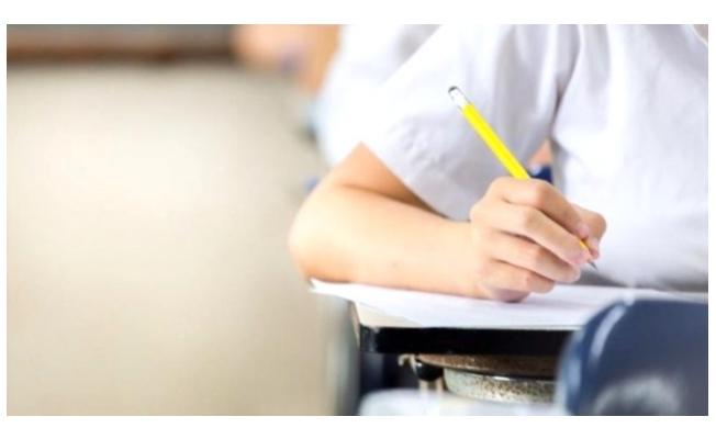 LGS Sonuçları Açıklandı! 181 Öğrenci Tam Puan Aldı!