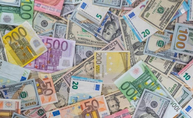 Dolar Rekorunu Tazeledi