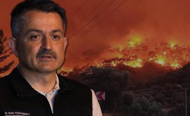 Bakan Pakdemirli duyurdu... Milas ve Bodrum yangınları kontrol altında