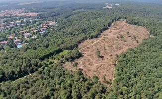 Tarım ve Orman Bakanlığı Açıklama Yaptı!