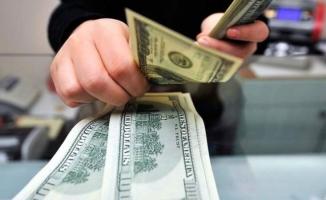 Dolara rekor kırdıran, itaatkar kadro beklentisi mi?