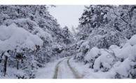 Marmara Bölgesi'nde Kar Yağışı Bekleniyor