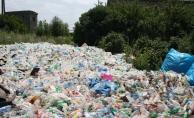 Plastik Atıkların Pençesindeki Deniz Canlıları