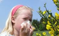 Polen alerjisi belirtileri nelerdir? Bahar alerjisi nedir? Bahar nezlesi nasıl geçer?