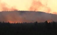İstanbul'daki Aydos Ormanı'nda yangın!