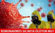 Dünyanın Merak Ettiği Soru! Havalar Isınınca Virüs Ölecek Mi?