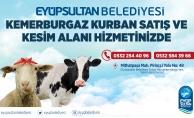 Kurban Bayramı'na sayılı günler kala Eyüpsultan Belediyesi Kemerburgaz Kurban Satış ve Kesim alanında hazırlıklar tamamlandı.