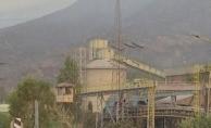 Milas, Karacasu, Manavgat... Mücadele sürüyor: Termik santraldeki alevler etkisini yitirdi