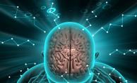 Koronavirüs beyni küçültüyor! 'Covid geçirdikten sonra mutlaka uzmana başvurun...'